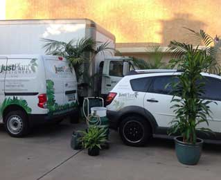 Just Plant Designers Vehicles